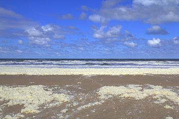 Strand van Zandvoort van Jose Lok