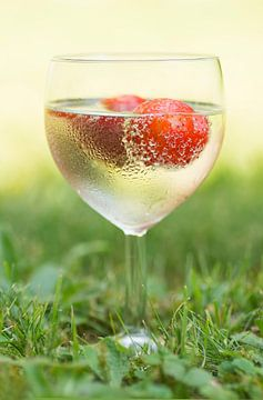 Un verre plein d'été sur Birgitte Bergman