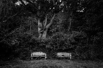 Bänke im Park von Bo Scheeringa Photography