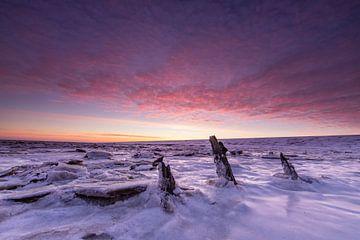 Oude paaltjes in de Waddenzee! van Peter Haastrecht, van