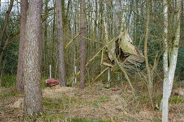 Restanten in het bos van Johan Vanbockryck