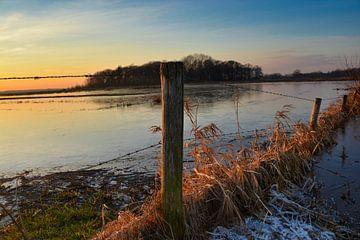 Winters landschap Gement - Moerputten van Verrassend Brabant