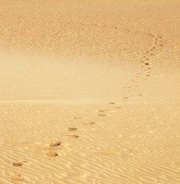 Voetafdrukken in het zand van BVpix