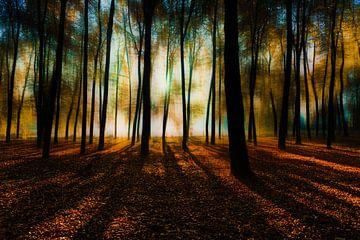 Herbst in Renswoude von Jeroen Mondria