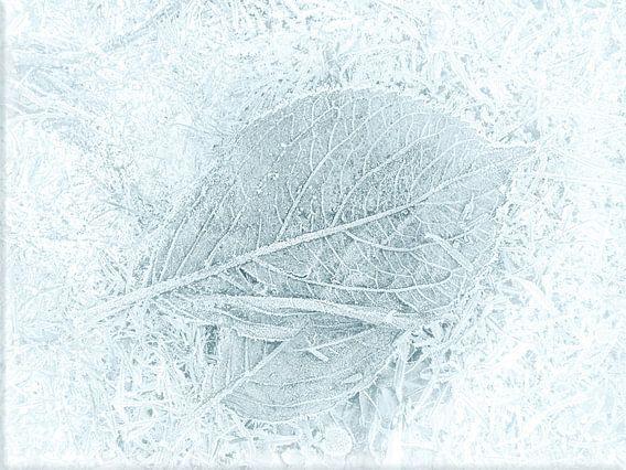 Bevroren bladeren, Minimal art
