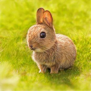 Baby Bunny van