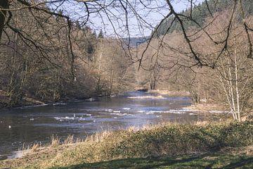 Koude rivier in de Ardennen van Nynke Nicolai