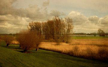 Polder am Lek von Marijke van Loon