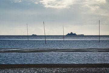 Pfähle im Wattenmeer auf der Insel Amrum von Rico Ködder