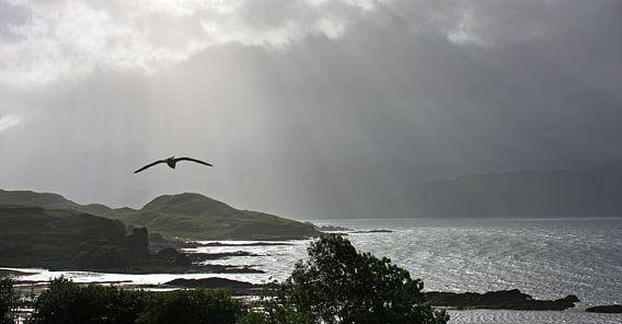 impressions of scotland - into the light