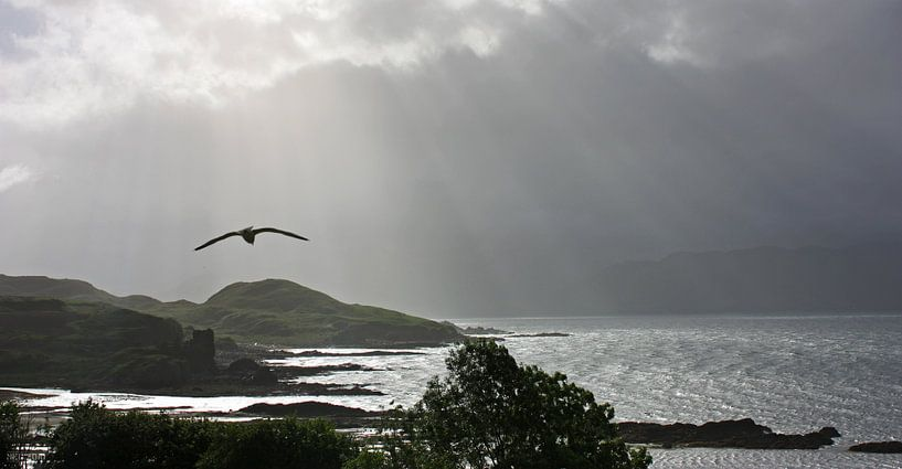 impressions of scotland - into the light sur Meleah Fotografie