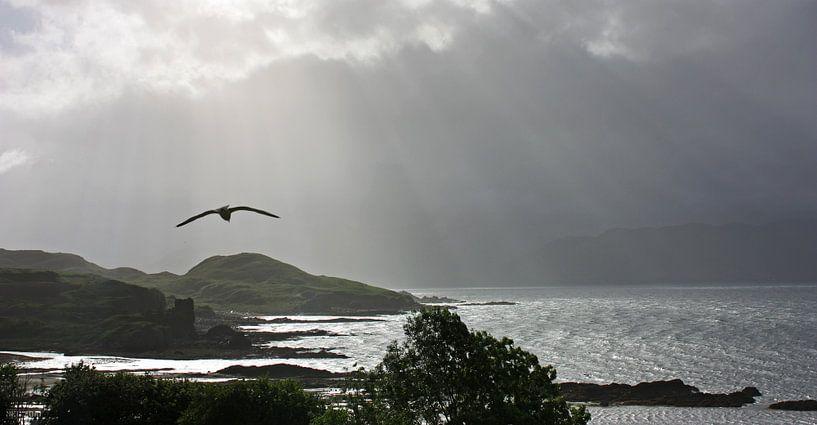 impressions of scotland - into the light van Meleah Fotografie