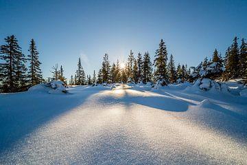 Winterlandschap Hoge Noorden van Coen Weesjes