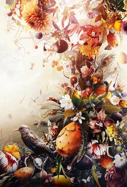 Abundance von Jesper Krijgsman
