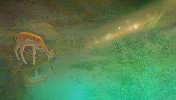 Deer Dream: junge Hirsche bei einem Sumpf im Wald mit Glühwürmchen von Nicole Erens