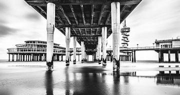 Onder de Pier van Ronne Vinkx
