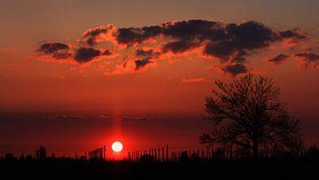 Zonsondergang in de Betuwe von Dick Vermeij
