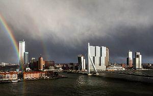 Regenboog Erasmusbrug Rotterdam