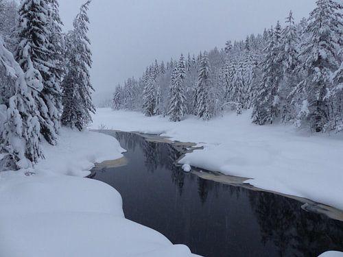 Winter rivier Noorwegen