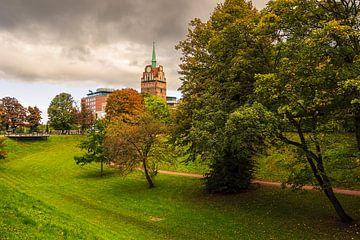 Blick auf das Kröpeliner Tor in Rostock im Herbst von Rico Ködder