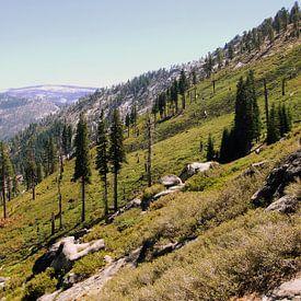 Yosemite Slope van Michiel Heuveling