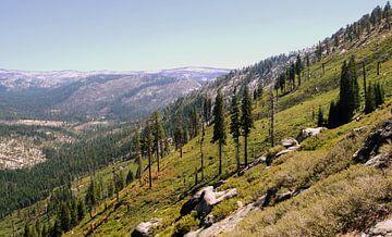 Yosemite Slope von Michiel Heuveling
