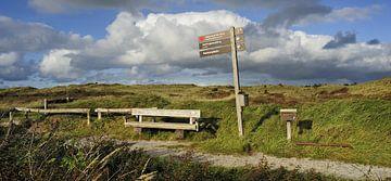Texel - Nationaal Park Duinen van Texel van foto zandwerk