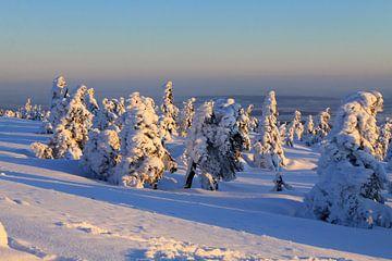 Der Brocken im Winterkleid von Karina Baumgart