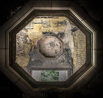 Durch das Auge der Fliege von Olivier Van Cauwelaert
