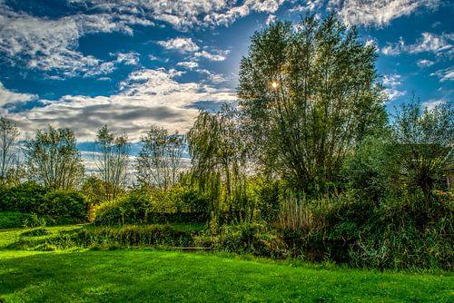 Witte wolken, een blauwe lucht en groen gras van
