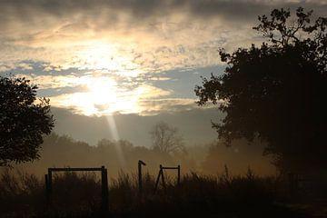 zonsopgang limburg von Nicole Wetzels