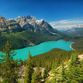 Peyto Lake Banff-Nationalpark von Vivo Fotografie