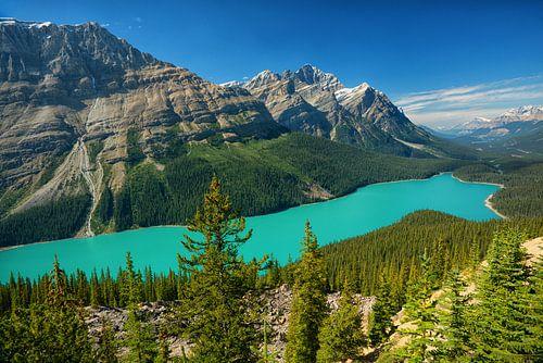 Peyto Lake Banff-Nationalpark