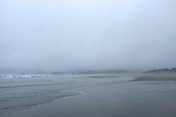 'Mist aan zee', Oregon  van Martine Joanne