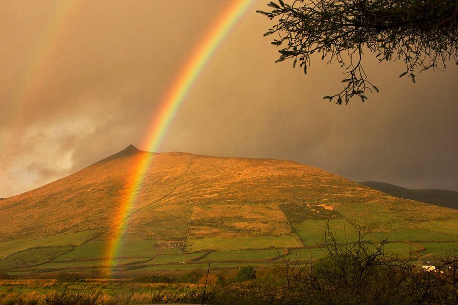 Ierse regenboog