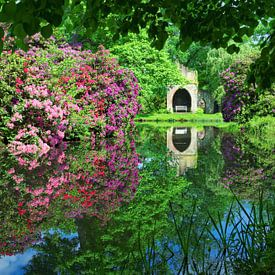 Blütenpracht in Breidings Garten von Gisela Scheffbuch
