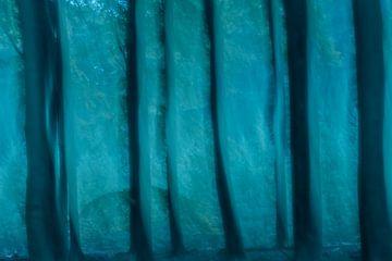 Bäume von Hennie Zeij