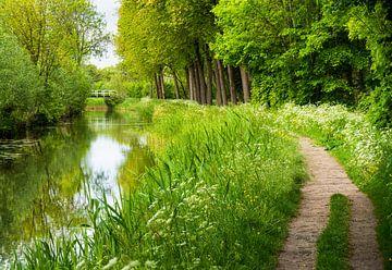 """Landschaft: """"Kanal im Grünen Herzen der Niederlande"""" von Coen Weesjes"""