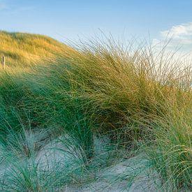 Seelandschaft mit der Dünenlandschaft von eric van der eijk