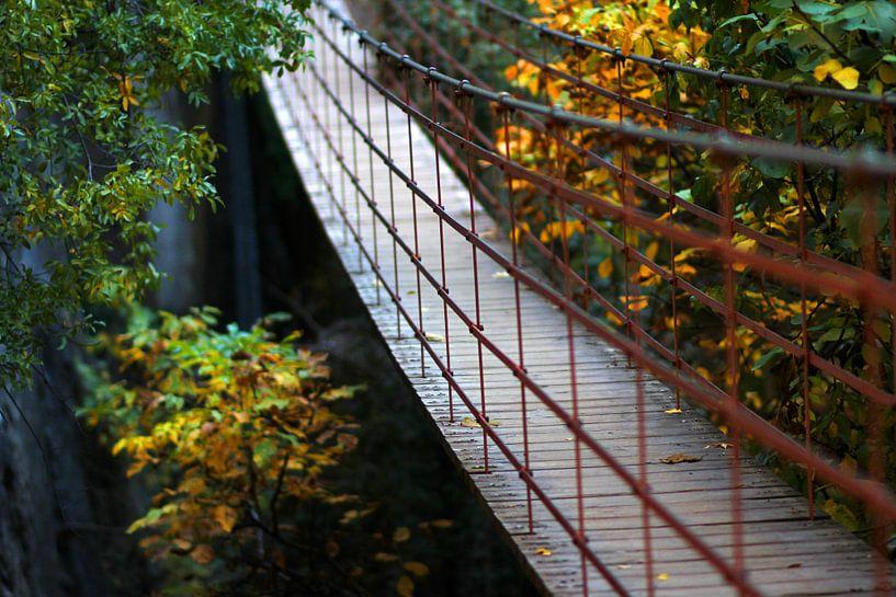 The walking Bridge sur Cornelis (Cees) Cornelissen