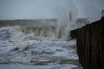 storm van Menno Selles