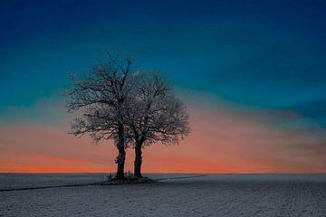 Lever du soleil sur un paysage d'hiver sur Gert Hilbink