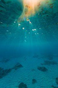 Onderwater Bonaire (kleur)