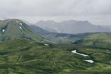 Groene natuur in IJsland van Shanti Hesse