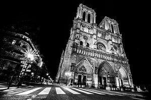De Notre Dame in de spotlights van Emil Golshani