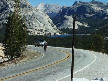 Cyclist on Tioga Road in Yosemite National Park van