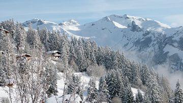 Zwitserse winterochtend van Felix wellink