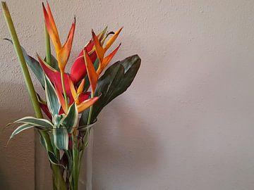 Bloemen tegen de muur. von Stanley Sussenbach