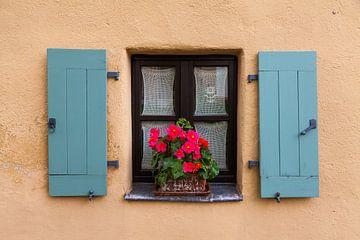 Oud venster met bloemen van Jan Schuler