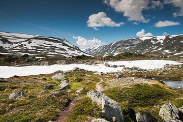 gamle strynefjellsvegen in norway van Compuinfoto .
